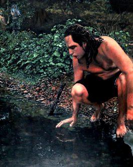 Le Mythe de Narcisse (Version printemps)